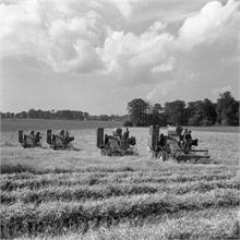 Combines at Paston in 1954