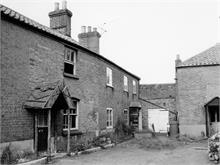Dog Yard, North Walsham. 3rd November 1960.
