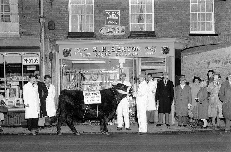 Photograph. Prize Bull outside Sexton Butchers in North Walsham Market Place (North Walsham Archive).