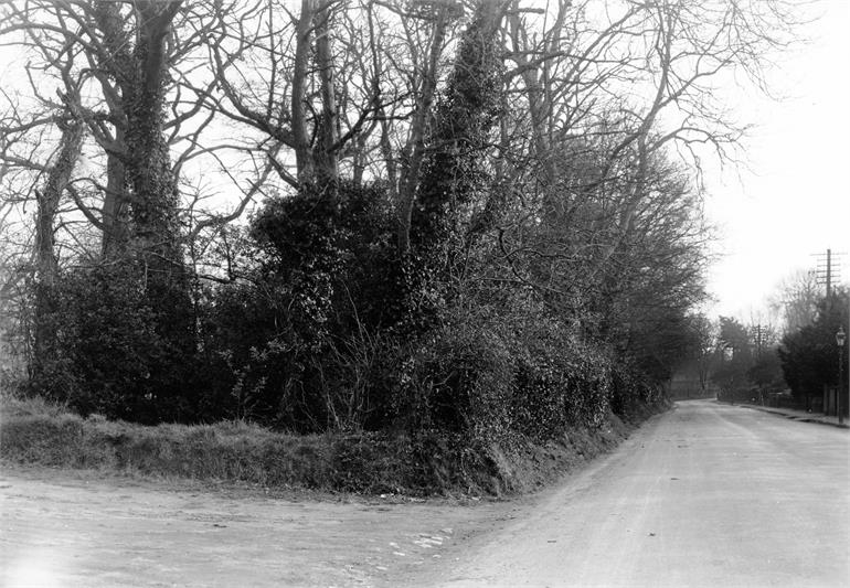 Photograph. Yarmouth Road around 1900. (North Walsham Archive).